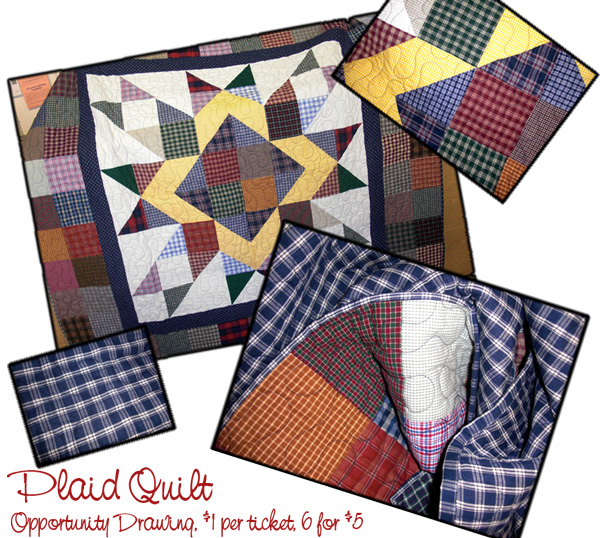 Plaid-Quilt-Montage-for-PGram-and-Web.jpg